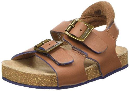 Kickers Nanti, Chaussures Bébé marche bébé garçon Marron