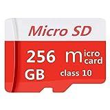Carte Mémoire microSDXC 256 Go Classe 10 avec Adaptateur SD