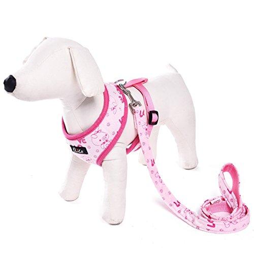 XUJW-PET, LOVE Style Training Walking Sicherheit Laufen, Haustier Harness Für Welpen & Hund Katze ( Size : M ) (Puppy Love Kostüm)