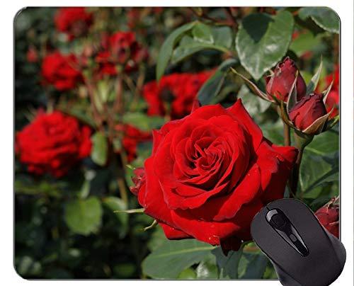 Rechteck-Mausunterlage, rote Blumen-Natur-Rosen-Blume - genähte Ränder