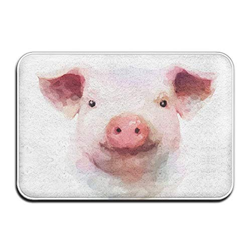 ferfgrg Paillasson Lovely Piggy Indoor Outdoor Paillassons Super Absorbs Mud Dirt Easy Clean 15.7\
