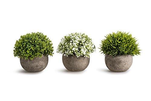 Hemore Künstliche Kunststoff Mini Pflanzen Einzigartige Fake Fresh Green Gras Blume in grau Topf für Home Dekor-Set von 3