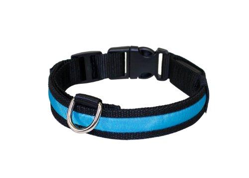 """Hunde Leuchthalsband LED Halsband Hundehalsband Hunde-Halsband """"Zandoo"""" Leuchthalsband für Hunde in der Farbe blau Größe S (35-40 cm) NEU von der Marke PRECORN"""