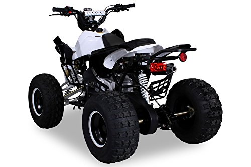 Kinder-Quad-S-14-Speedy_3
