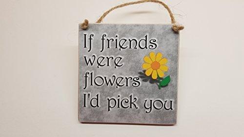 (Letitia48Maud Grau Holz Schild If Friends Were Flowers I 'd Pick You Best Friend Geburtstag Geschenk)