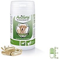 AniForte natürlicher Zeckenschutz Zeckenabwehr 60 Kapseln - Naturprodukt für mittelgroße Hunde 10- 35 kg