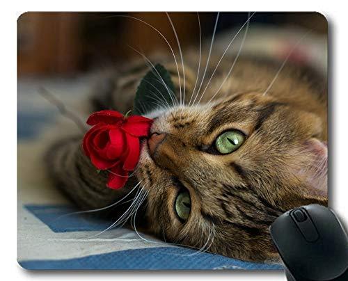 Gaming-Mauspad, Unscharf gestellt Katze Rose Blume Mauspad, Mauspad für Computer cat350