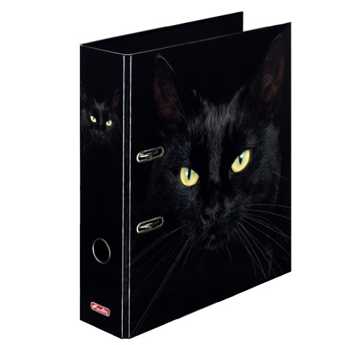 Motivordner maX.file Katzen