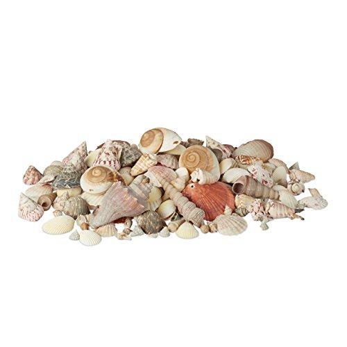 Relaxdays Muschel Deko im Set, XL-Mix mit großen Meeresschnecken, Herzmuscheln, maritime Tischdeko zum Basteln 2kg, bunt