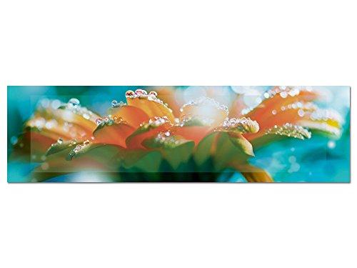 GRAZDesign Wandbild Petrol orange Blume auf Alu Dibond Metall Wohnung Deko Kunstdrucke, Wanddeko Wohnzimmer Vintage, Schlafzimmer Blumenbilder / 180x50cm