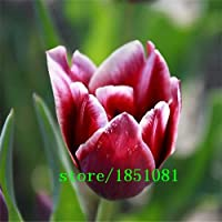 Green Seeds Co. 100 unids/Lote, Flor Artificial Real Tacto PU tulipán Escritorio Regalo de decoración del hogar de la Boda Verde