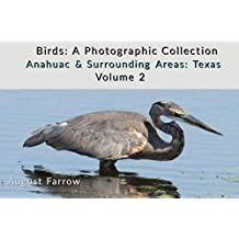 Birds: A Photographic Collection: Anahuac & Surrounding Areas: Texas - Volume 2 (Birds of Anahuac) (English Edition)