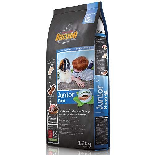 Belcando Junior Maxi [15 kg] Hundefutter | Trockenfutter für Junghunde großer Rassen | Alleinfuttermittel für Junghunde ab 4 Monaten -