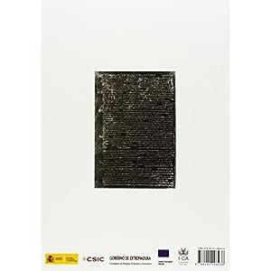 Artífices idóneos: Artesanos, talleres y manufacturas en Hispania (Anejos de Archivo Español de Arqueología)