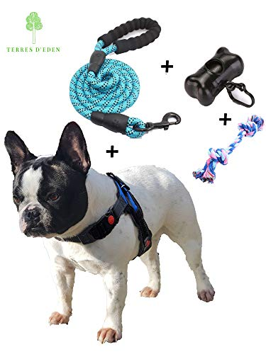 Hundegeschirr Kleine Hunde, Geschirr Hund,Hunde Geschirr,Brustgeschirr hund,Hundegeschirr Welpen Verstellbar - Ideal Welpen, Chihuahua, bulldoggen - Größe S