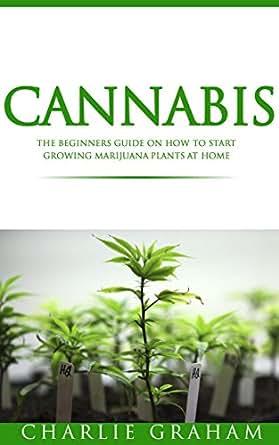 how to grow marijuana at home