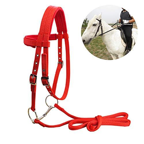 Womdee Nylon Riding Halters Bitless Bridle for Horse, Gebissloser Nylonzaum für Pferde, Reithalfter, die den Hackamore-Stirnbandkopf brechen, Größen erhältlich