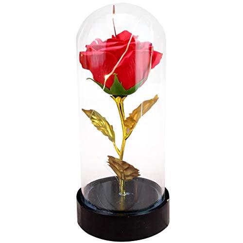 TMY Lámina Oro Flor eterna Cubierta Vidrio Estrella