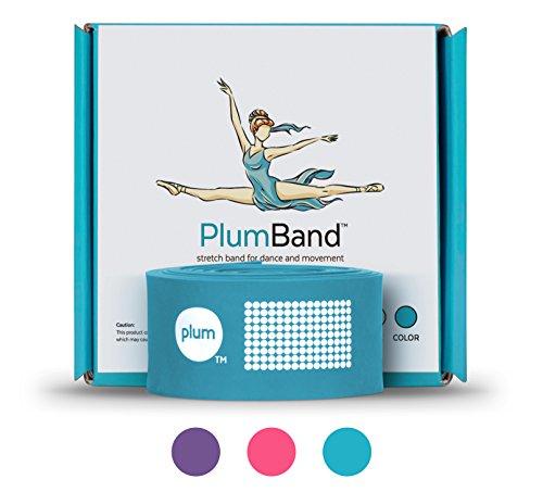 PlumBand - Ballett Stretch Band Für Tanz & Gymnastik - Fitnessband Für Training Und Steigerung Der Flexibilität - Erwachsene Und Kinder - Bonus Reisetasche - Blau - Mittel