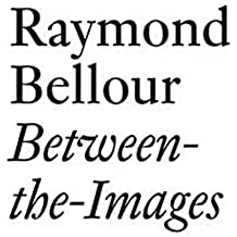 Raymond Bellour: Between-the-Images (Documents)