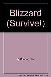 Blizzard (Survive!)