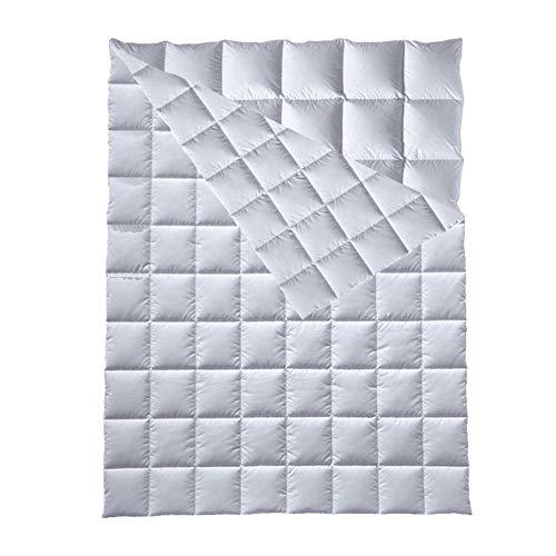 Schäfer Daunendecke All You Need in 135x200 cm | 4-Jahreszeiten-Decke gefüllt mit 100% Daunen