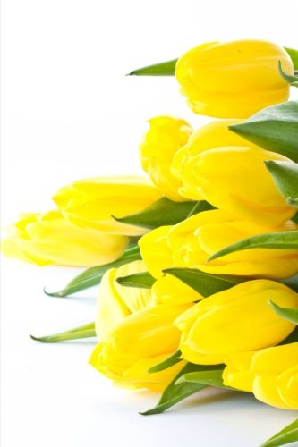 a-brilliant-yellow-tulip-flower-arrangement-blank-150-page-lined-journal-for-your-thoughts-ideas-and