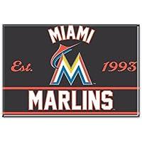 WinCraft MLB MIAMI MARLINS Metall Magnet