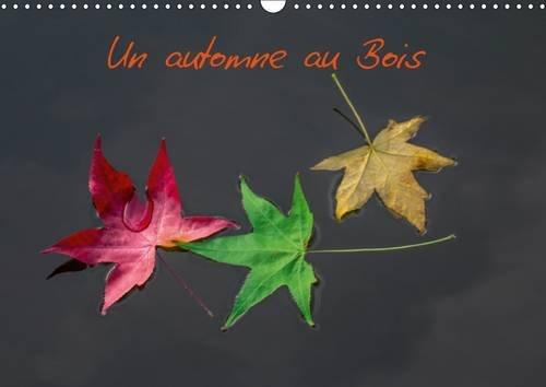 Un Automne Au Bois 2017: Un Automne Dans Le Bois De Boulogne.