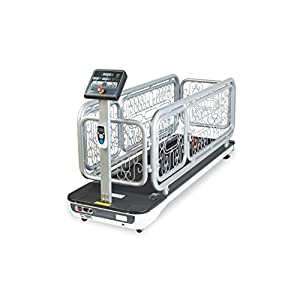 PANCHO'S GYM TREADMILL FOR DOGS MODEL PG701 9