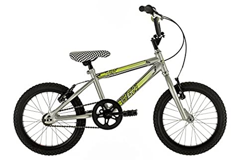 Raleigh Boy's Fury BMX Bike - Silver, 16