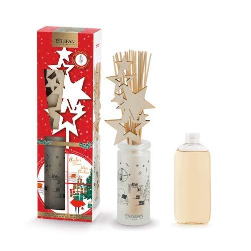 Bouquet parfumé et sa recharge Ambre blanc - Esteban