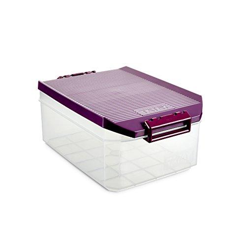 TATAY 1150220 - Caja de Almacenamiento Multiusos con Tapa, 4,5 l de Capacidad, Plástico Polipropileno...