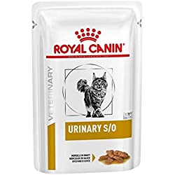 ROYAL CANIN Urinary S/O Chat - Sachets Fraîcheur Morsels Gravy - 12 x 85 g