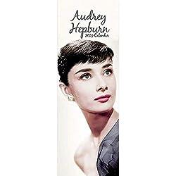 Audrey Hepburn 2019 Calendario Delgado En Inglés