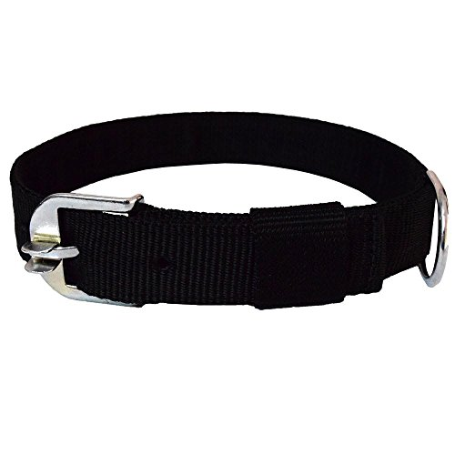 Pawzone 1.25' inch Black Dog collar