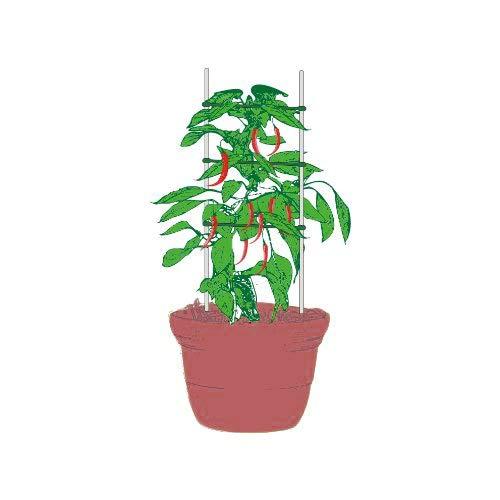 UniEco Rankhilfe für Pflanzen, Tomaten-Spalier, Pflanzenleiter, Stützleiter, Gurken-Spalier, 2 Stück mit 5/16 cm Erdspießen, 3 Stück -