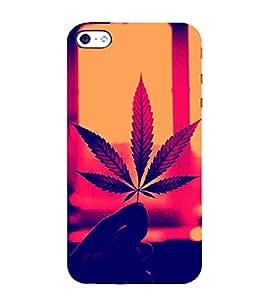 Fiobs Designer Phone Back Case Cover Samsung Galaxy A5 (6) 2016 :: Samsung Galaxy A5 2016 Duos :: Samsung Galaxy A5 2016 A510F A510M A510Fd A5100 A510Y :: Samsung Galaxy A5 A510 2016 Edition ( Bob Marely Leaf Trendy Style Canada )