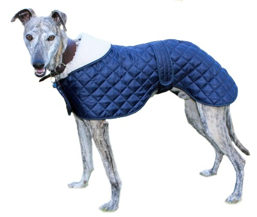 Cosipet Greyhound Anorak, Jacke für Hunde, blau - Mantel Windhund