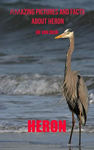 Libro PDF Gratis Heron: Amazing Pictures and Facts About Heron