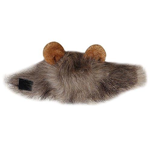 tüm Löwe Cosplay Ohren für Hunde Katze Halloween Karneval mit Ohren (Einfach Kerl Für Ein Halloween Kostüm)