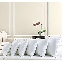 """Rohi Square Polyester Cushion Pad Inserts, Filler Inner, Full Range of Sizes, White (Pack of 1, 20"""" x 20"""" (50cm x 50cm))"""