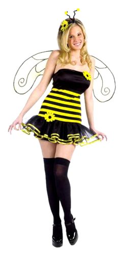 Adult Honey Bee Costume Small/Medium Fancy Dress (Honey Bee Flügel Kostüm)