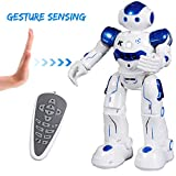Best Robot Dogs - SGILE Remote Control RC Robot Toys Interactive Walking Review