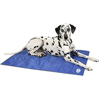 Scruffs Cool Mat, Large, Cyan/Navy