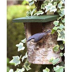 Open Birch Log Bird Nest Box