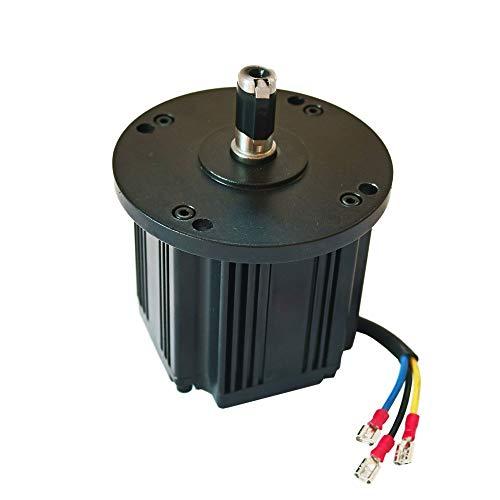 Alternatore Trifase Brushless a Magneti Permanenti Generatore elettrico Eolico Idrico Dinamo 12V 24V 48V (100W)