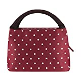 Philorn Reusable Insulated Lunch Bag Sturdy Oxford Box Tote with Zipper for School and Work, Wine Red