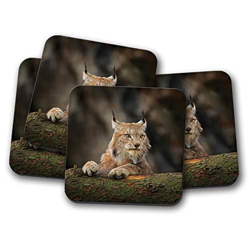 Untersetzer #12595 Awesome Lynx - Katze Rocky Mountains Rockies America Geschenk Rocky Lynx
