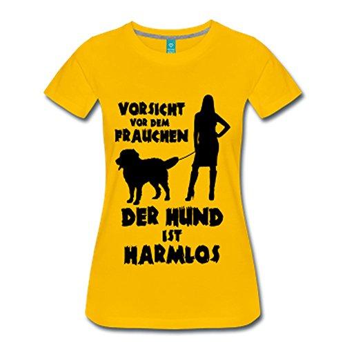 Berner Sennenhund: Vorsicht vor dem Frauchen – der HUND ist HARMLOS Sonnengelb